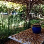 Houses for sale in Savyon 208