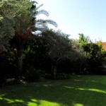 Houses for sale in Savyon_005